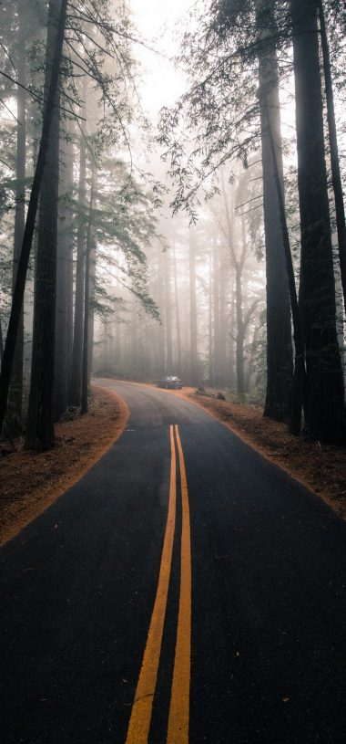 Road Fog Marking Wallpaper 720x1544 380x815