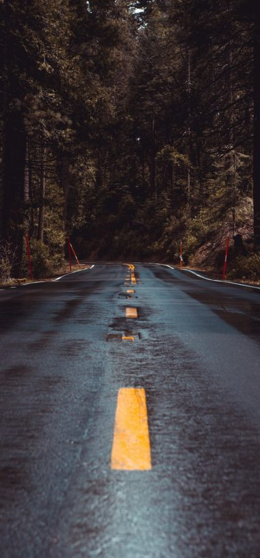 Road Forest Turn Wallpaper 720x1544 380x815