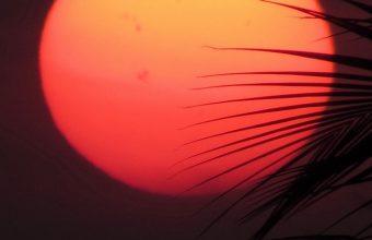 Sun Red Sunset Wallpaper 720x1544 340x220