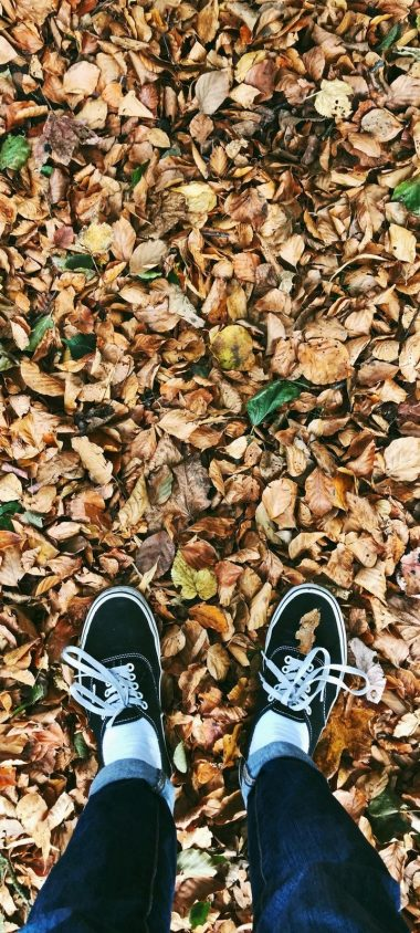 Autumn Feet Foliage Fallen Wallpaper 720x1600 380x844
