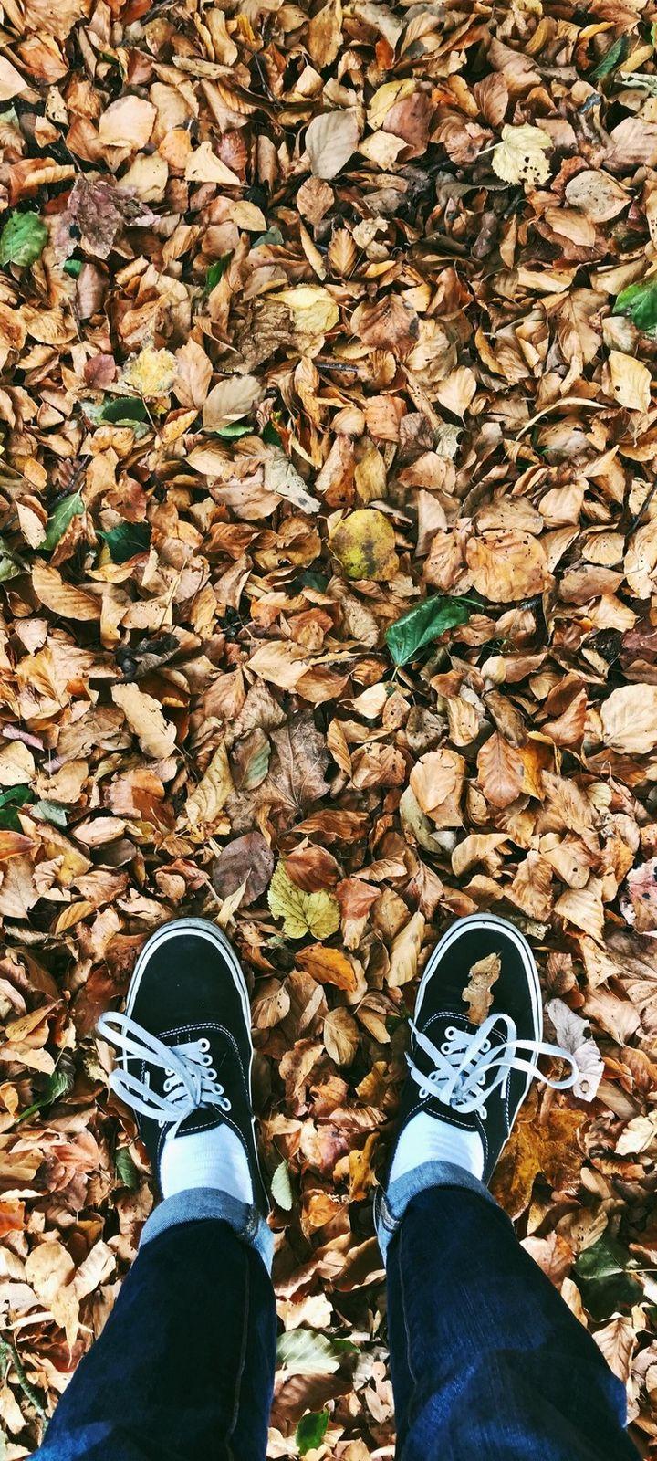 Autumn Feet Foliage Fallen Wallpaper 720x1600