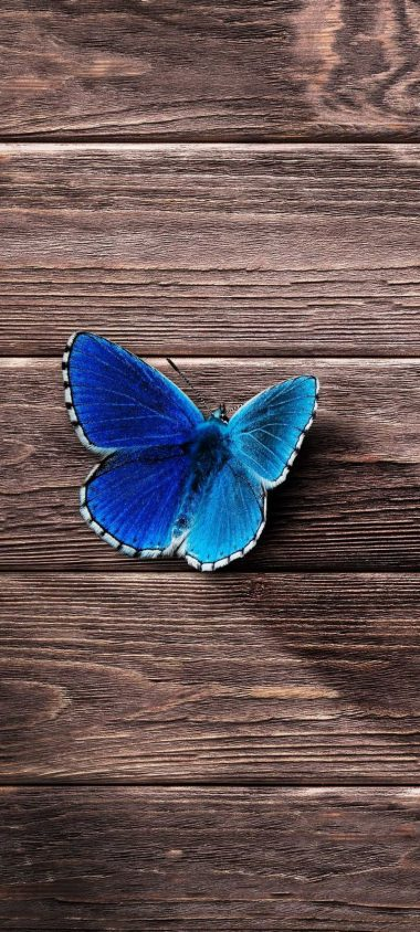 Butterfly Surface Wooden Wallpaper 720x1600 380x844