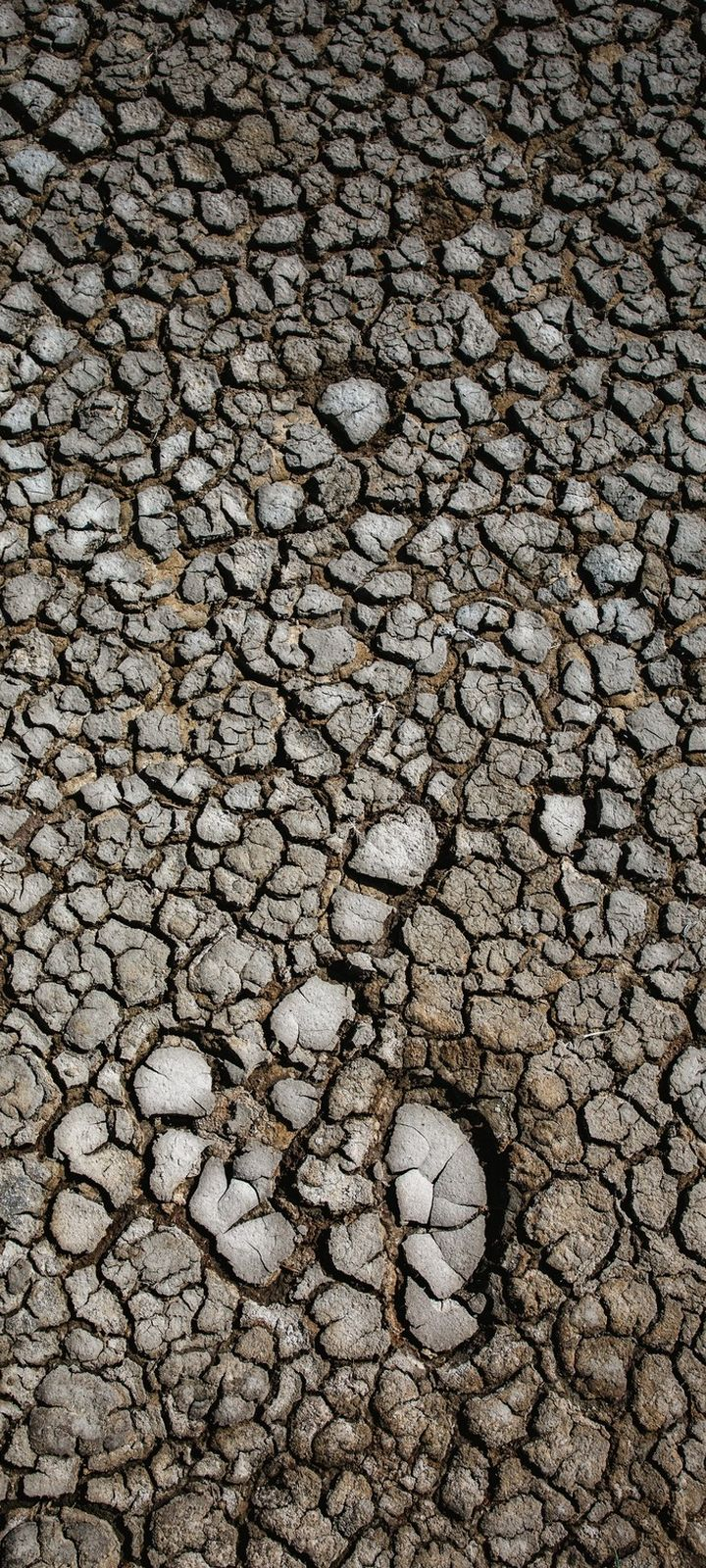 Earth Dry Cracked Wallpaper 720x1600