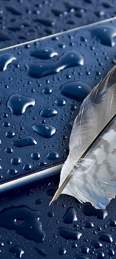 Iphone 6 Apple Feather Smartphone Wallpaper 720x1600 380x844