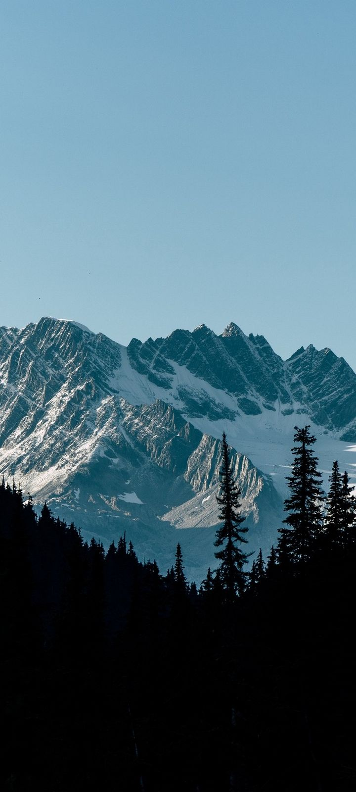 Mountains Forest Shadow Wallpaper 720x1600