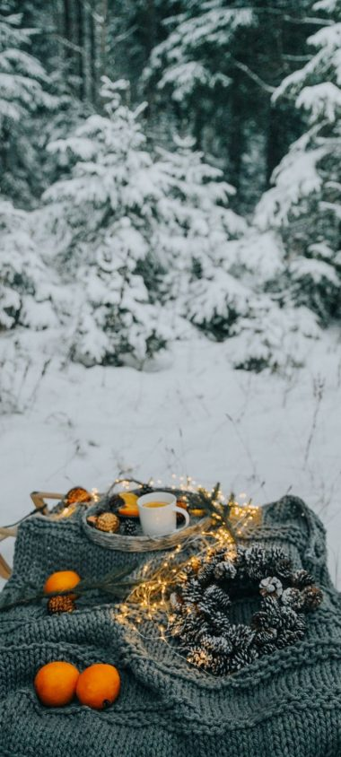 Picnic Comfort Snow Wallpaper 720x1600 380x844
