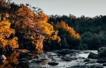 River Stones Trees Wallpaper 720x1600 340x220