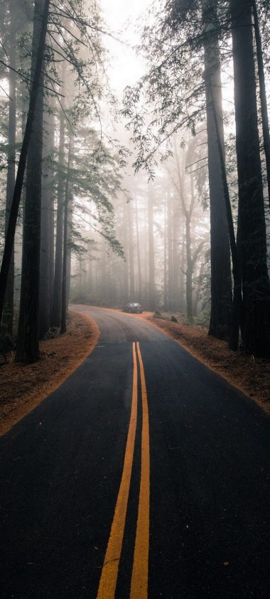 Road Fog Marking Wallpaper 720x1600 380x844