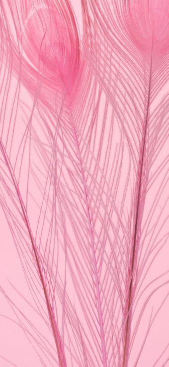 LG G7 Fit Stock Wallpaper 12 1440x3120 340x737