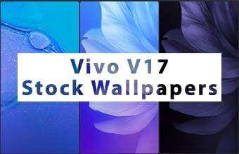 Vivo V17 Stock Wallpapers