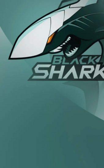 Xiaomi Black Shark 3 Stock Wallpaper 1080x2400 02 340x550