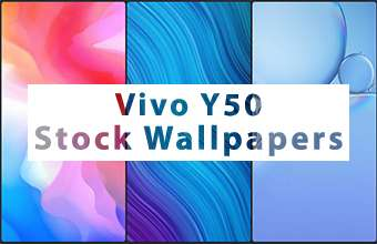 Vivo Y50 Stock Wallpapers