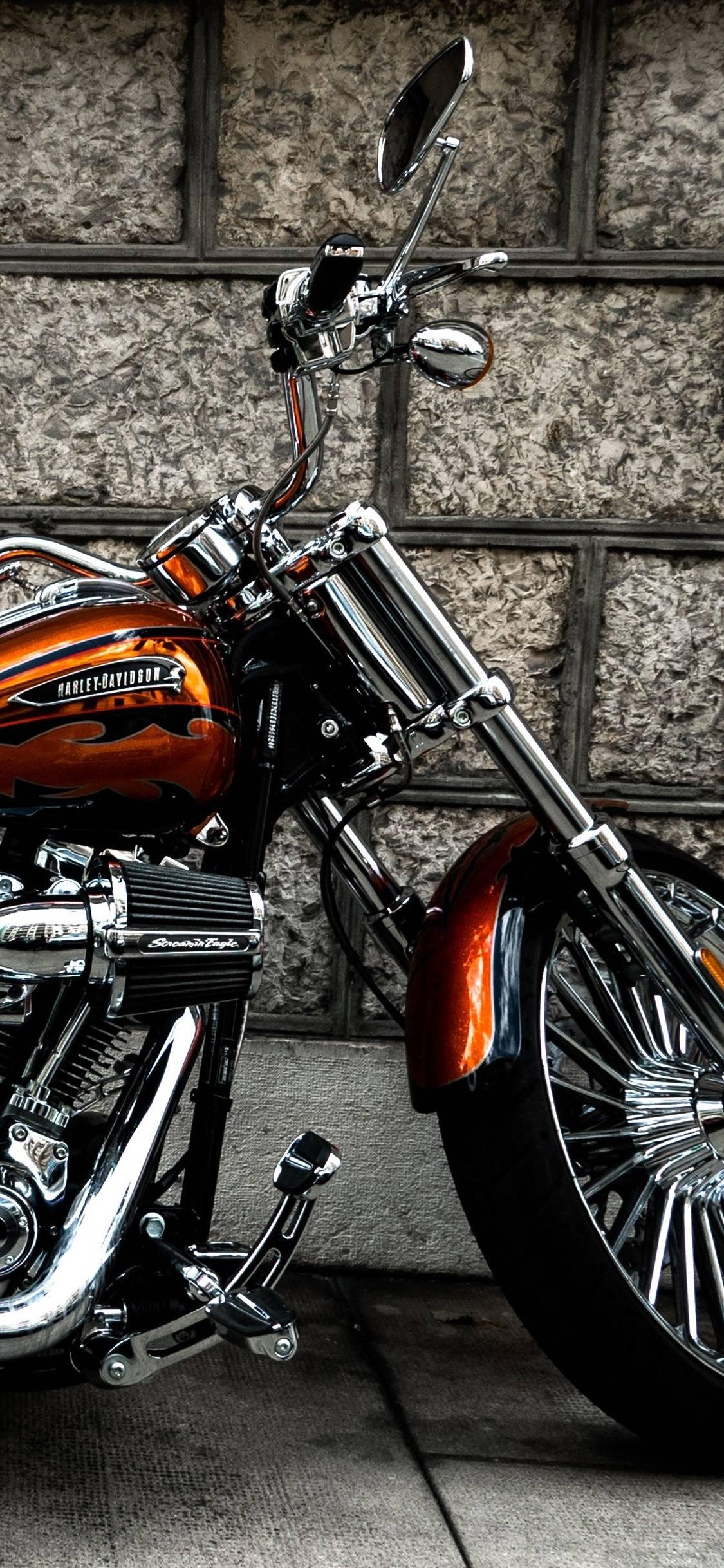 Get Harley Wallpaper  Pictures