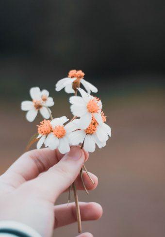 Hand Flowers Field 1640x2360 1 340x489