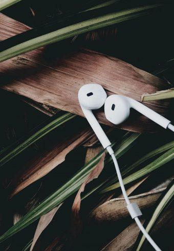Headphones Music Audio 1640x2360 1 340x489
