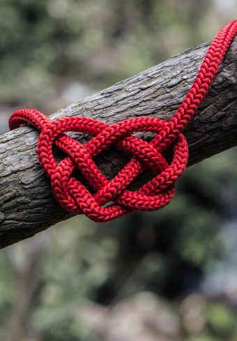 Heart Rope Spelled Tree Wallpaper 1640x2360 1 340x489