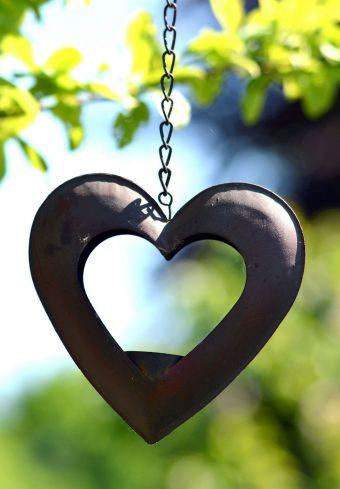 Heart Suspension Blur Chain 1640x2360 1 340x489