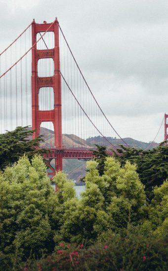 Golden Gate Bridge Wallpaper 1440x2560 10 340x550