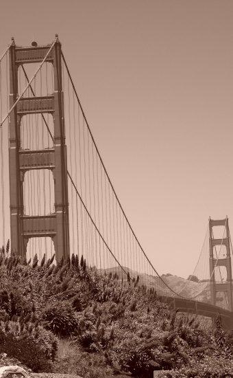Golden Gate Bridge Wallpaper 1944x2592 09 340x550