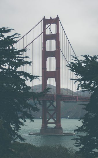 Golden Gate Bridge Wallpaper 2812x4218 11 340x550