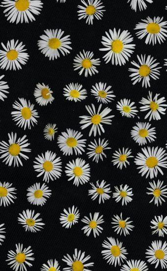 iPhone Flower Wallpaper 008 340x550