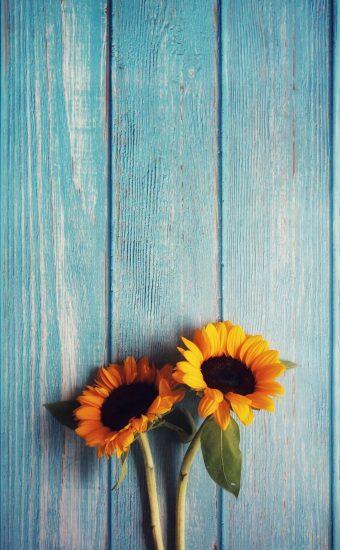 iPhone Flower Wallpaper 012 340x550