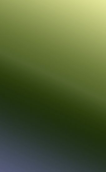 Gradient Phone Wallpaper 004 340x550