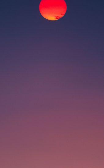 Gradient Phone Wallpaper 229 340x550